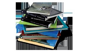 Image Slider competences
